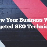 Grow Your Business With Targeted SEO Techniques