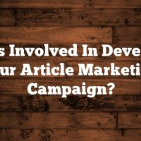 What's Involved In Developing Your Article Marketing Campaign?