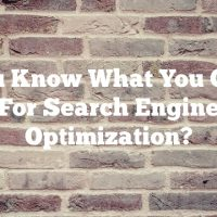 Do You Know What You Can Do For Search Engine Optimization?
