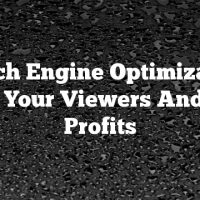 Search Engine Optimization: Build Your Viewers And Your Profits