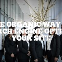 The Organic Way To Search Engine Optimize Your Site