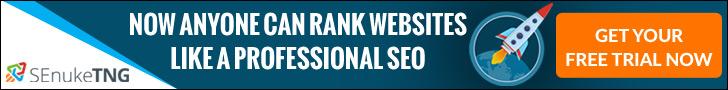SEnukeTNG Rank #1 in Google, Download Now!